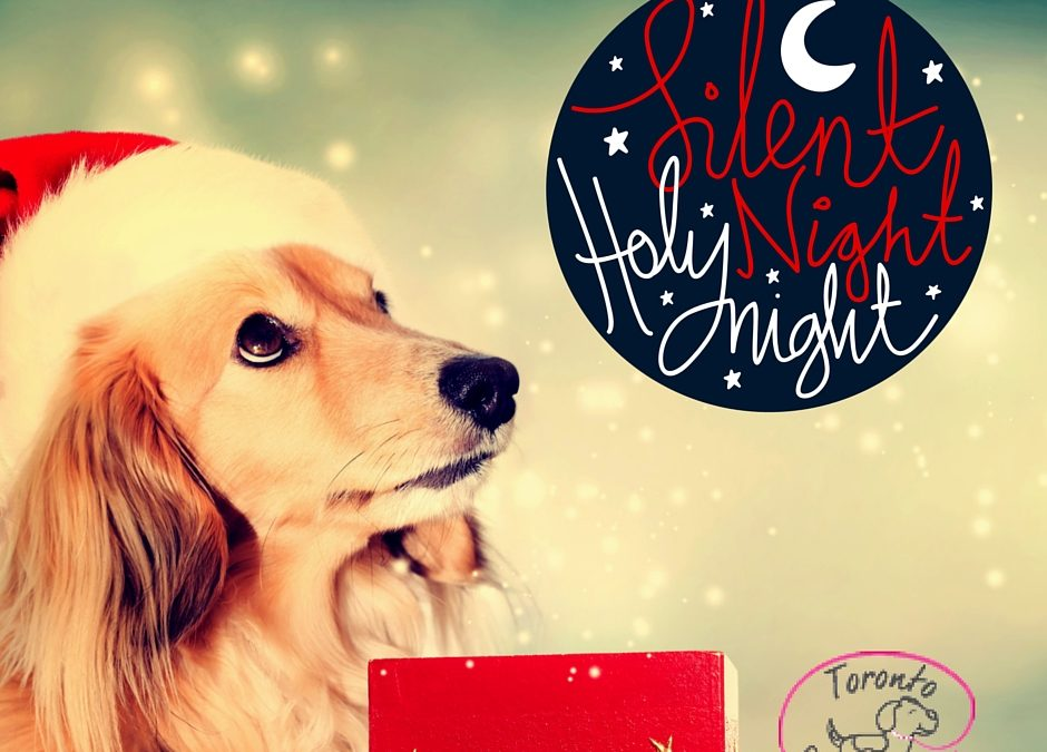 Christmas Dinner for your Pup! What they can and can't eat…