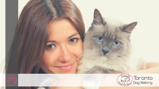 Hiring a Pet Sitter – What to Look Out For!