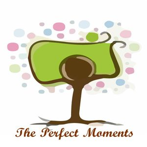 The Perfect Moments Photography