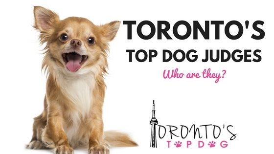 Get to Know the Judges! Toronto's Top Dog