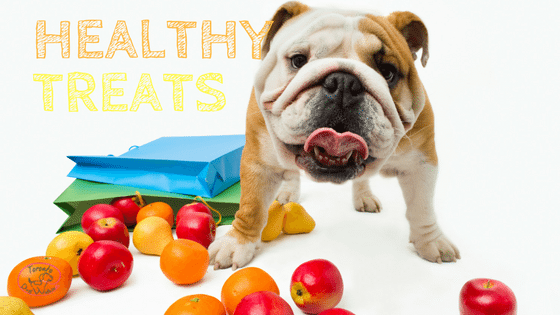 What Fruits and Vegetables Can you Give your Dog?