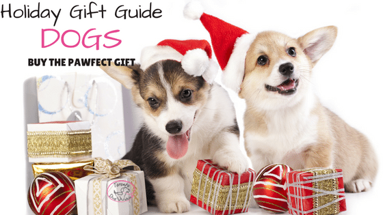 Holiday Gift Ideas for Dogs