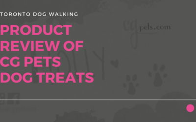 A Review of CG Pets Dogs Treats