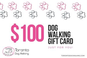 Toronto Dog Walking Gift Card