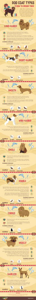 Dog Coats and How to Groom Them