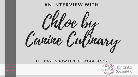An Interview with Chloe by Canine Culinary