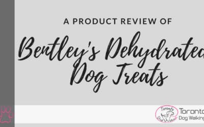 A Review of Bentley The Dobie Dehydrated Dog Treats