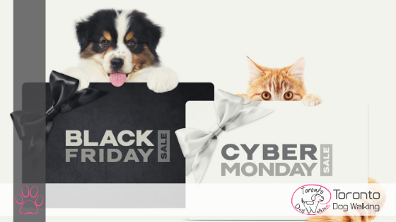 Shop Black Friday Deals for Dogs & Dog Lovers